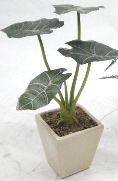 人造花小品盆叶-人造花-人造花材-花世界人造花材图片