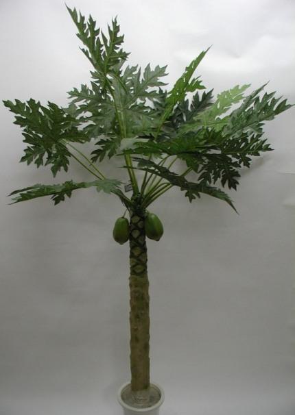 人造木瓜树盆景