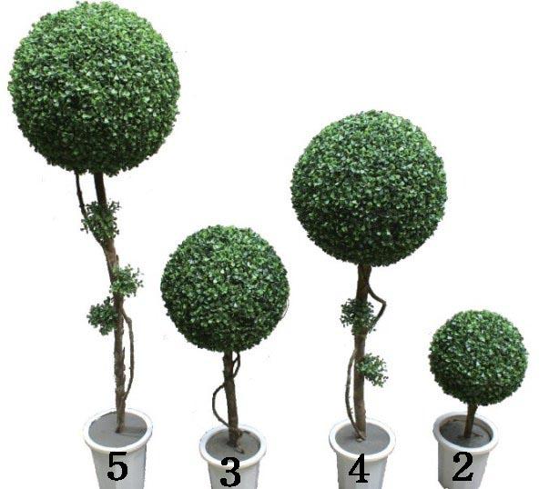 人造一球修剪树盆景
